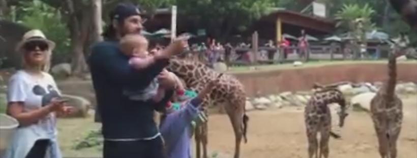 Com família em zoológico